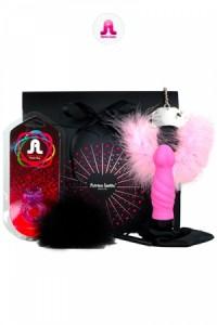 """Coffret Cadeau SexToys Sex Toys Adrien Lastic """"Noir Intense"""""""
