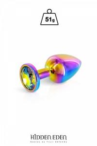 Plug Anal Bijou Aluminium Rainbow Taille S Hidden Eden