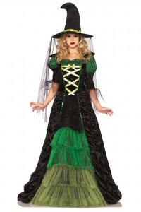 Costume Sorcière Conte de Fée Leg Avenue