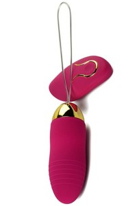 Oeuf Vibrant Télécommandé Rose 10 Vitesses USB Canvor IM#73946